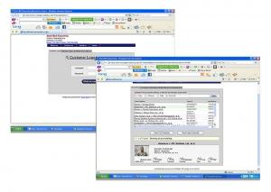 Customer Login Screen